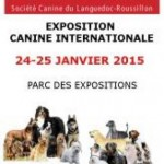 exposition-canine-internationale-janvier-2015